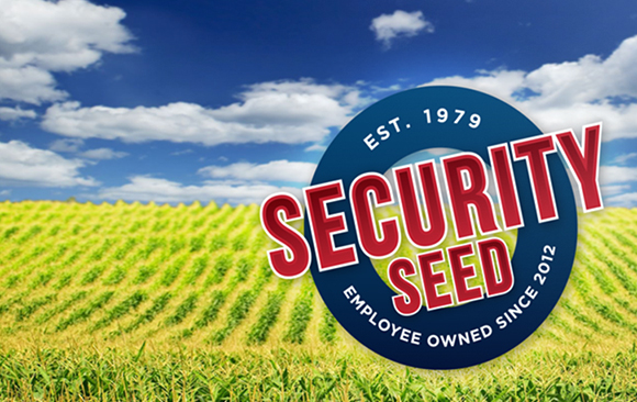 SecuritySeed1-580x366